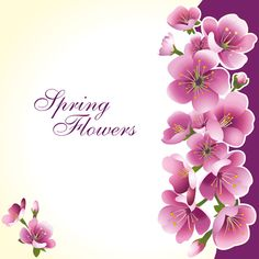 Dark pink flower spring background set vector 02 - Vector ...