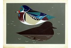 Wood Duck serigraph  by Charley Harper