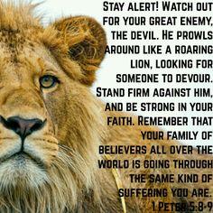 1 Peter 5:8-9