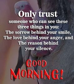 To honor those relationships, we have compiled the 60 of the best quotes about our best friends to share with the people you love the most. Good Morning Bible Quotes, Good Morning Quotes Friendship, Good Morning Friends Quotes, Good Morning Love Messages, Good Morning Motivation, Good Morning Beautiful Quotes, Morning Quotes Images, Good Morning Inspirational Quotes, Morning Greetings Quotes