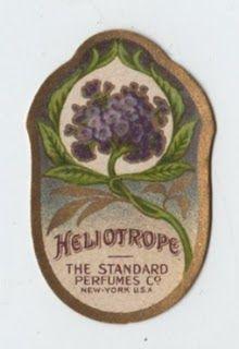 Heliotrope Perfume Label