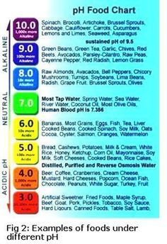 Acid Reflux Food Chart | What Are You Eating? Find Out With These pH Alkaline Charts | in5d.com