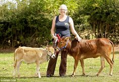 these are REAL miniature cows!!! Zebus cows is their names, and staying small is their game. I WANT ONE
