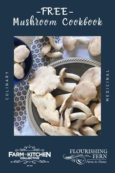 Hey there, mushroom lover! I have compiled my top FAVORITE mushroom recipes in a FREE Mushroom Cookbook. The recipes are all meat free, mostly vegetarian and some vegan. Each recipe is authentic and tested in my home kitchen for ease and maximum flavor. Mushrooms are loaded with nutritional value and make a delicious meat alternative. Learn to cook meals that will make your family asking for more! Our primary goal is to bring families together over healthy meals. #vegetarianrecipes Best Mushroom Recipe, Mushroom Recipes, Mushroom Benefits, Healthy Meals, Healthy Recipes, Herbal Magic, Learn To Cook, No Cook Meals, Herbalism
