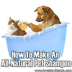 How To Make An All-Natural Pet Shampoo    www.onedoterracommunity.com   https://www.facebook.com/#!/OneDoterraCommunity