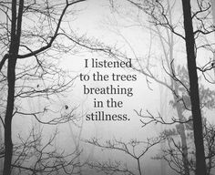"""""""I listened to the trees breathing in the stillness."""""""
