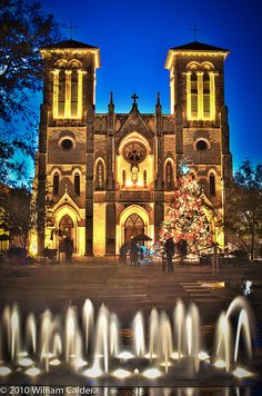 Cathedral of San Fernando, San Antonio. The Cathedral our Great Grandparents were married in.