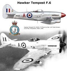 Hawker Tempest F.6 Ww2 Aircraft, Fighter Aircraft, Military Aircraft, Fighter Pilot, Fighter Jets, Airplane History, Hawker Tempest, Hawker Typhoon, Ww2 Planes