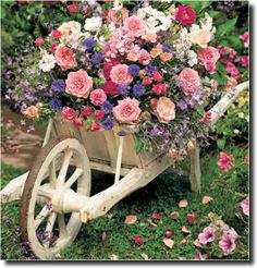 Beautiful idea for your garden//