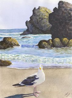 Harris Beach Painting by Catherine G McElroy - Harris Beach Fine Art Prints and Posters for Sale