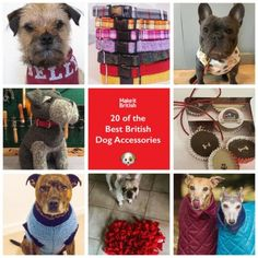 They are man's best friend and we love to accessorise our pooches! We've pulled together a list of the best British dog accessories brands .