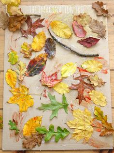 Autumn leaf and glue collage- nature art activity for kids