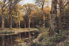 A forest stream , 1907 - Peder Mørk Mønsted