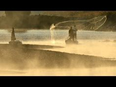 夜明け前から川面に立ち、白い息を吐きながら網を投げる漁師たち。  清流で知られる高知県四万十市の四万十川では、冬の風物詩「落ちアユ漁」が行われていた。  落ちアユは産卵期に川を下ってきたアユで、大きくなった腹には卵やしらこを抱えている。  今年の落ちアユ漁は10数年ぶりの豊漁。四万十川中央漁協の副組合長、  堀岡喜久雄さんは「保護活動の成果が出たのでは」と話した。