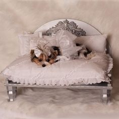 Demetria Designer Dog Bed: The Classy Dog - Designer Dog Clothes, Luxury Dog Beds