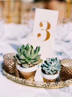 Mexico Dreaming: A Destination Wedding in Sayulita succulent centerpieces with gold painted table nu Summer Wedding, Our Wedding, Destination Wedding, Wedding Planning, Dream Wedding, Trendy Wedding, Elegant Wedding, Wedding Flower Photos, Flower Bouquet Wedding