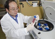 MSU researcher aims to improve flu vaccine development