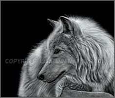 'Winter is Coming' Pastel & pencil on velour