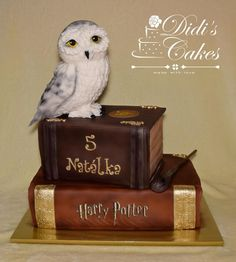 Harry potter cake by Didis Cakes