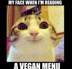 I do <3 an all-vegan menu! :-)