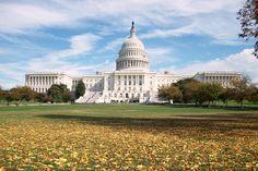 Backside of the Capitol Building, Washington, DC.  Taken October 2010.
