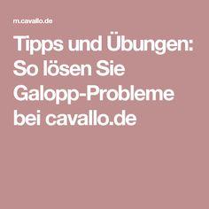 Tipps und Übungen: So lösen Sie Galopp-Probleme bei cavallo.de