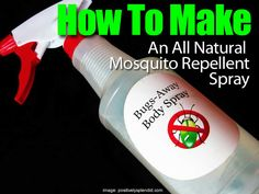 We've shared a few posts on mosquito repellant plants, which can help. There are times, when you're out in the garden or relaxing on the patio you need to resort to a spray. Why not use a spray that is natural, effective and made from essential oils. At PositivelySplendid.com, Amy shares (courtesy of her talented …