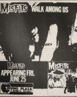 Misfit Flyer
