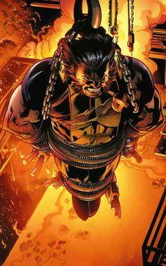 Wolverine by Doug Braithwaite *