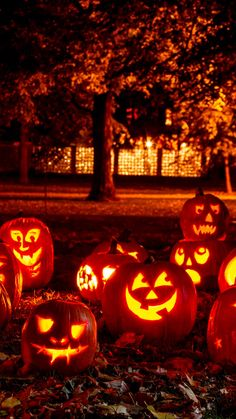 You are in the right place about kids halloween pictures Here we offer you the most beautiful pictur