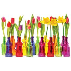 Find Many Tulip Narcissus Flowers Colorful Glass stock images in HD and millions of other royalty-free stock photos, illustrations and vectors in the Shutterstock collection. Thousands of new, high-quality pictures added every day. Bottle, Home Decor, Merlin, Decoration Home, Room Decor, Flask, Home Interior Design, Jars, Home Decoration