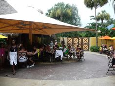 Eat and drink all day long in all-inclusive price at Discovery Cove, Orlando Discovery Cove Orlando, Stuff To Do, Things To Do, Water Parks, Vacation Days, Relaxing Places, All Inclusive, Amusement Parks, Florida