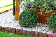 19 roślin, które będą rosły w zacienionych miejscach! - Twoje DIY Fire Pit Landscaping, Bonsai, Pergola, Plants, Fire Pits, Landscapes, Gardening, Diy, Paisajes