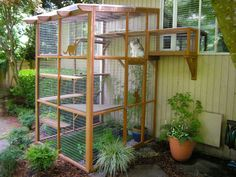 Thinking of building a catio for your cat? Check out these beautiful examples of outdoor cat enclosures designed by Cynthia Chomos of Catio Spaces in Seattle! Outdoor Cat Enclosure, Diy Cat Enclosure, Reptile Enclosure, Diy Cat Tree, Cat Window, Window Wall, Cat Cages, Outdoor Cats, Cat House Outdoor