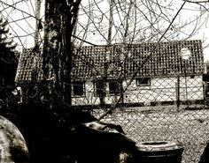 'Backyards' von mimulux bei artflakes.com als Poster oder Kunstdruck $16.63
