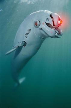 Flipper 2.0 <- I was thinking instead it can be an upgrade for Darwin!!! #SEAQUEST