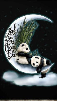 Cute Panda Baby, Panda Love, Red Panda, Cute Baby Animals, Funny Animals, Cute Panda Wallpaper, Funny Phone Wallpaper, Disney Wallpaper, Beach Pictures Wallpaper