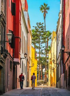 Places In Spain, Places To Visit, Tenerife, Grand Canaria, Spain Culture, Canario, Island Beach, Canary Islands, Spain Travel