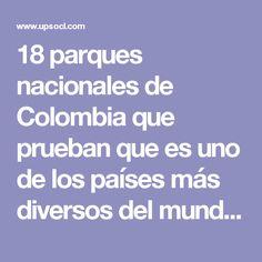 18 parques nacionales de Colombia que prueban que es uno de los países más diversos del mundo | Upsocl