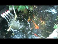 Koi pond trickle tower
