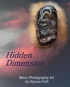 In this photo book you will see high quality micro photography of Nature's hidden beauty.  These incredible pictures have been  created with the purpose of presenting unusually interesting works of natural art - and, sometimes, with Alyona's Firth interpretation.