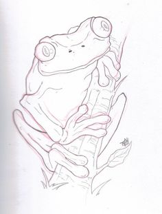 wood burning pattern of Tree frog.. pyrography