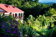 Hidden away on a hillside, the Habitation Grande Anse hotel in Guadeloupe is surrounded by lush tropical gardens. https://www.caribbeanbluebook.com/members/873/habitation-grande-anse.html?utm_content=buffer0006c&utm_medium=social&utm_source=pinterest.com&utm_campaign=buffer #Caribbean #Travel #Hotel #Vacation #Tourism