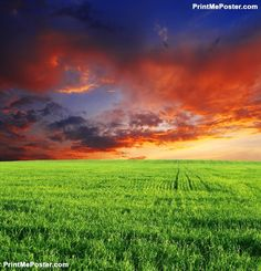 Poster of field, Nature Posters, #poster, #printmeposter, #mousepad, #tshirt