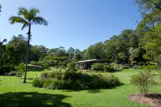 Take A Break, Byron Bay, 5 Star Hotels, Hotel Offers, Lily Pad, Family Room, Garden, Travel, Wi Fi