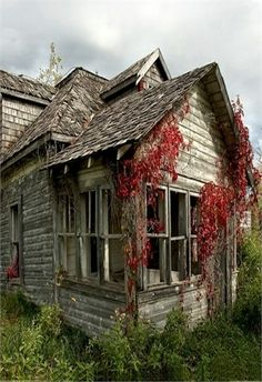 *Old Farm House & Red Ivy Vines, 70 Abandoned Old Buildings.. left alone to die