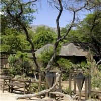 Moholoholo Forest Camp has 10 luxury chalets with ensuite facilities on the slopes of the Mariepskop on a private game reserve in Limpopo close to Kruger National Park