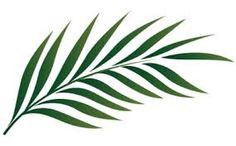 Image result for palm frond negative image