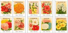 Guaranteed to brighten your letters and bring a smile to your face, the Vintage Seed Packets stamps feature illustrations from actual early 20th-century seed packets.