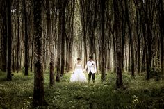 Pre-Wedding in phuket,Thailand I try to capture with nature and natural light photography